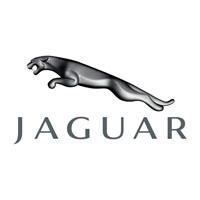 Jaguar Boot Liner